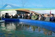 طرح پرورش ماهی روستای گرمهسر به بهره برداری رسید