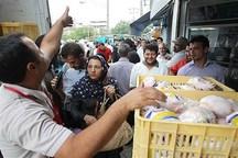 مرغداران نسبت به عرضه گوشت مرغ منجمد در بازار ترغیب شوند