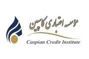 77 شعبه موسسه اعتباری کاسپین فعال است