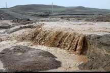 سیلاب اخیر در قم خسارت جانی در پی نداشته است