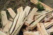 کشف بیش از دو تن چوب قاچاق در لنگرود