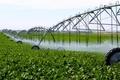 استفاده از آبهای نامتعارف نسخه درمان کشاورزی کرمان است
