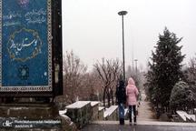 بارش برف در برخی نقاط تهران + عکس