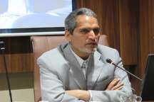 560 تن برنج طرح تنظیم بازار در خراسان جنوبی توزیع شد