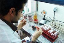 راه اندازی آزمایشگاه تشخیص مواد مخدر در لرستان ضروری است