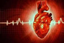 برنامه ثبت ملی بیماری های قلب و عروق در لرستان اجرا می شود