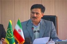 رکورد تولید دانه روغنی سویا در استان اردبیل شکسته شد