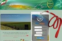 خرید گندم کشاورزان مشروط به ثبت در سامانه است