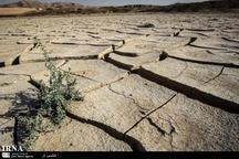 خشکسالی هزار میلیارد ریال به کشاورزان زابلی خسارت زد