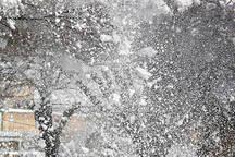 احتمال بارش پراکنده برف و باران در قزوین