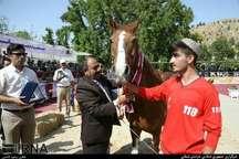 برخی از اسبداران کشور در اعتراض به تبارنامه مخدوش فدراسیون سوارکاری در جشنواره اسب بجنورد شرکت نکردند