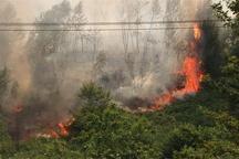 آتش سوزی در مراتع گرمی 50 میلیارد ریال خسارت برجای گذاشت