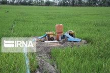 حمایت از کشاورزان ضامن تامین امنیت غذایی است