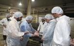 استحصال 7هزار تن گوشت سفید در کشتارگاه طیور مه ولات