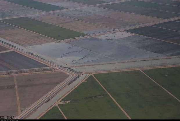 سیل به 6 هزار و 500 هکتار از زمین های کشاورزی دزفول خسارت زد