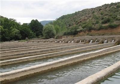 طرح پرورش ماهیان خاویاری در گچساران آماده بهره برداری است