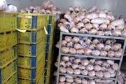 میزان توزیع مرغ در مانه و سملقان 4 برابر نیاز روزانه است