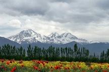 30 درصد تنوع زیستی کشور در استان اردبیل قابل مشاهده است