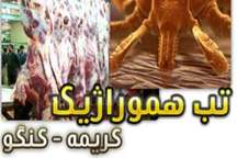 توضیحات دانشگاه علوم پزشکی اصفهان درباره آمار بیماری تب کریمه کنگو در این استان