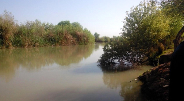 هشدار نشت احتمالی نفت چاههای آزادگانشمالی به تالاب هورالعظیم
