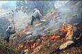 هیچ اطلاعی از محاصرهشدگان آتش ارتفاعات خامی باشت نداریم  شرایط نگرانکننده است