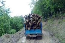 کشف 2 تن چوب جنگلی قاچاق در کازرون