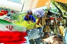 گیلان در پرداخت تسهیلات اشتغال روستایی رتبه 11 کشوری را داراست