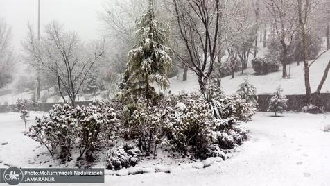 هوای ایران برفی و بارانی می شود