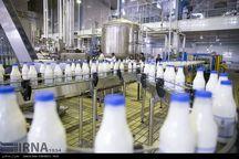تولید روزانه شیر در ابرکوه ۷۰ درصد افزایش یافت