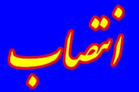 چندین مشاور استاندار کرمانشاه در حوزه های مختلف منصوب شدند