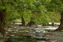 شماره 1540 برای ارتباط مردم با اداره کل حفاظت محیط زیست کرمان
