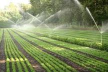 اجرای سامانه نوین آبیاری در 28 هزار هکتار از زمین های کشاورزی پلدشت