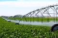 اجرای سیستم نوین آبیاری، یکی از طرح های الویت دار اقتصاد مقاومتی