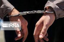 ۲ سارق حرفهای منازل زنجان دستگیر شدند