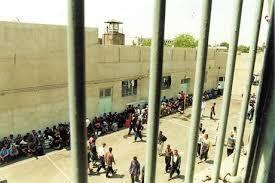 70  درصد زندانیان کشور مجرمین مواد مخدر هستند
