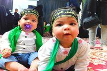 مراسم شیرخوارگان حسینی در شهرستان کهگیلویه برگزار شد