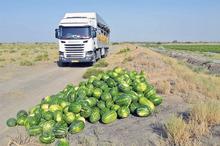 افزون بر500هزار تن محصول جالیزی ازسیستان و بلوچستان حمل شد