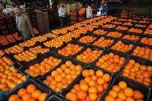 توزیع میوه شب عید کرج از 25 اسفند آغاز می شود