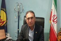 ۷ پروژه برق رسانی در هفته دولت در کهگیلویه افتتاح و کلنگ زنی میشود