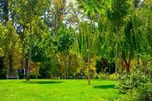 باغ دیلمان شهرری به بوستان عمومی تبدیل شد
