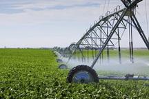 35 هزار هکتار زمین در پلدشت به آبیاری های نوین مجهز شده است