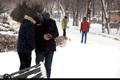 برف مدارس اردبیل در روز شنبه را تعطیل کرد