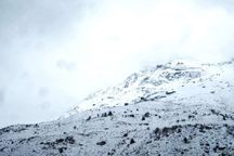 ارتفاع برف در محل سقوط هواپیمای تهران - یاسوج حدود سه متر است