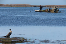 30 کمینگاه غیرمجاز شکارچیان در خلیج گرگان تخریب شد