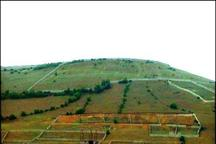 رفع هم پوشانی زمین های کشاورزی و ملی به افزایش اراضی کشاورزی کمک کرده است