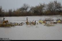 نظارت بر بهداشت مناطق سیل زده خوزستان در دستور کار است