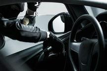 سارقان مسلح خودرو در فسا دستگیر شدند