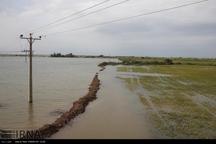 کشت تابستانه و پاییزه خوزستان در هاله ابهام است