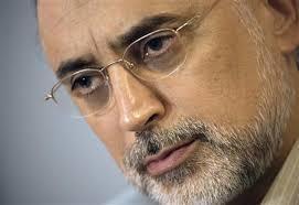 صالحی: ادبیات سیاسی اول انقلاب باید مطابق با شرایط روز تغییر کند