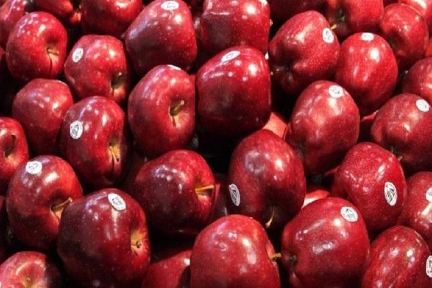توزیع میوه جهت تنظیم بازار آذربایجان غربی ادامه دارد